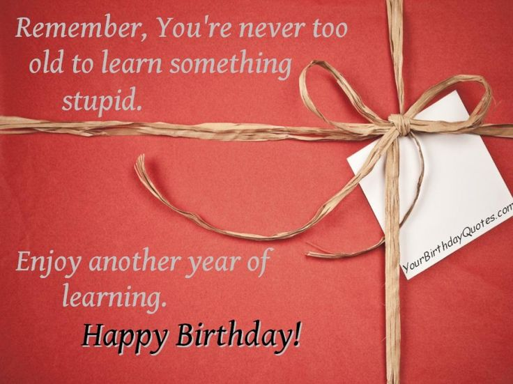The 25 Best Sarcastic Birthday Wishes Ideas On Pinterest Sarcastic Happy Birthday Wishes
