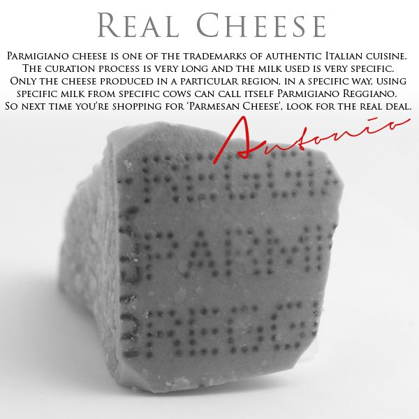 REAL CHEESE FOOD TIP