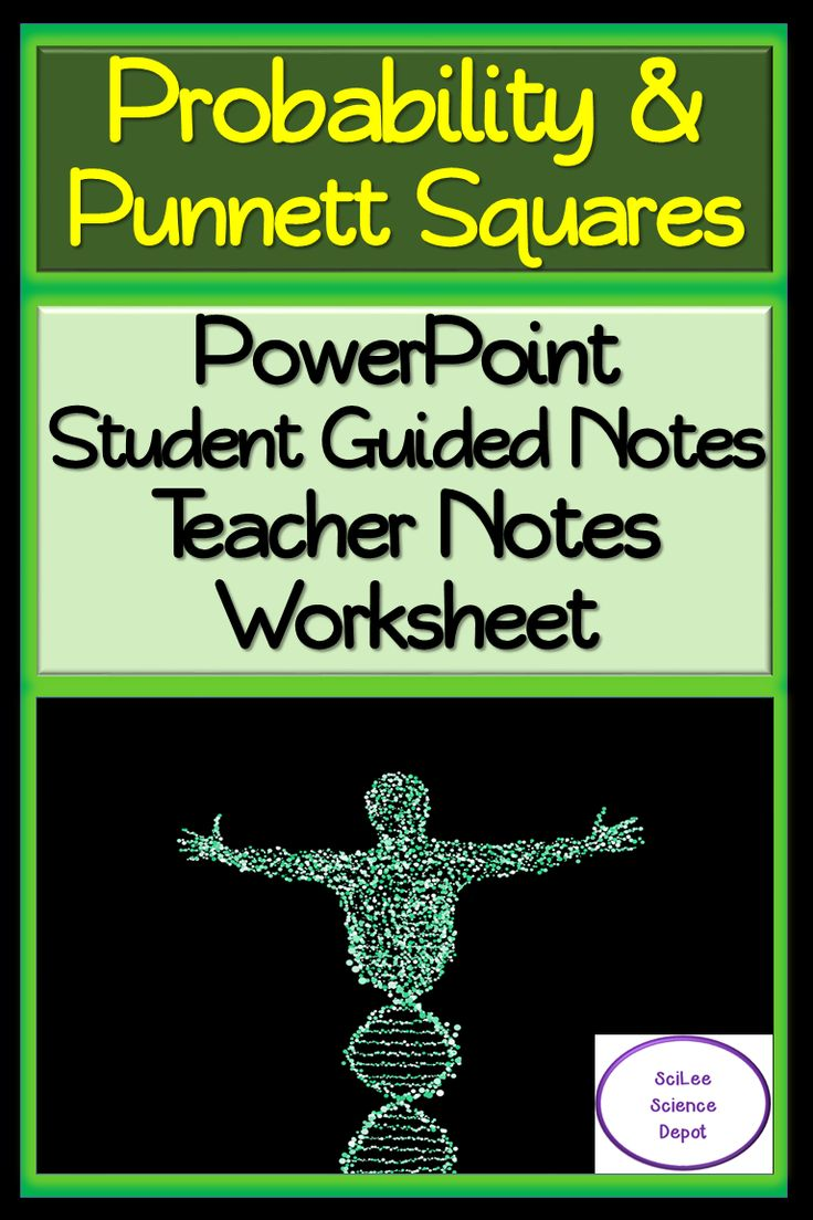 Probability & Squares lesson PowerPoint, Guided
