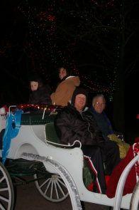 Carriage ride through Winter Wonderland at Tilles Park