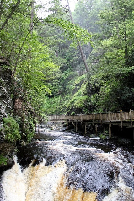 Bushkill Falls, Pocono Mtns, PA