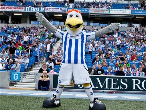 Mostly Brighton and Hove Albion Stuff - my team since I was a boy!