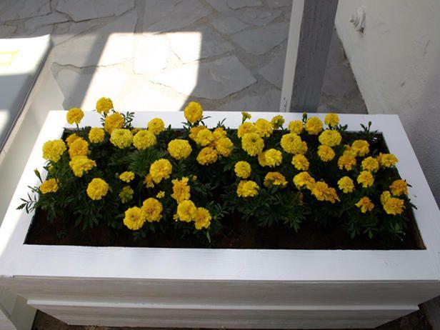 Patio Planter BoxPlanters Durable, Planters Boxes, Planter Boxes, Patios Planters