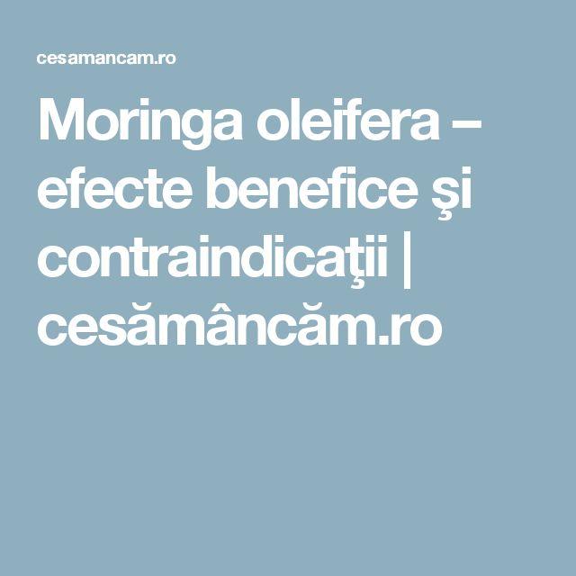 Moringa oleifera – efecte benefice şi contraindicaţii | cesămâncăm.ro
