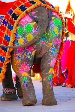 Jaipur, India's elephant festival: one jumbo sized beauty pageant. Part of the festival is the 'gaj shringar' exhibition, which displays everything to do with elephants – from howdahs (the carriages placed on top of the animals) to the ornaments and textiles that they wear during the celebrations.