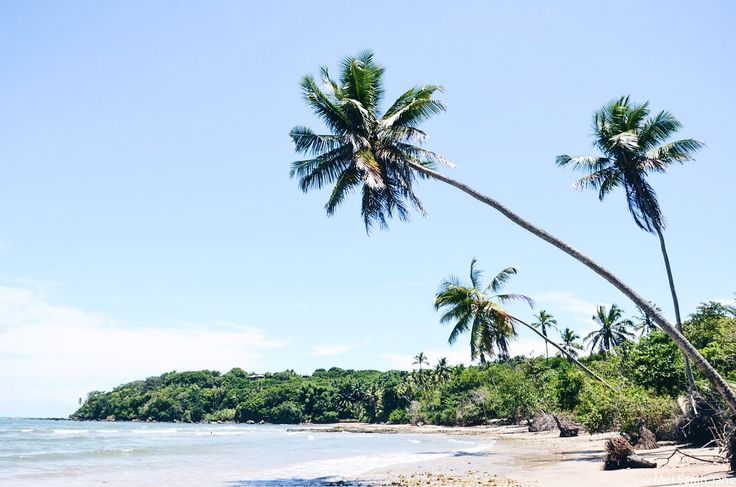 • B O I P E B A • #Travel #Voyage #Bresil #Brazil #Boipeba #trip