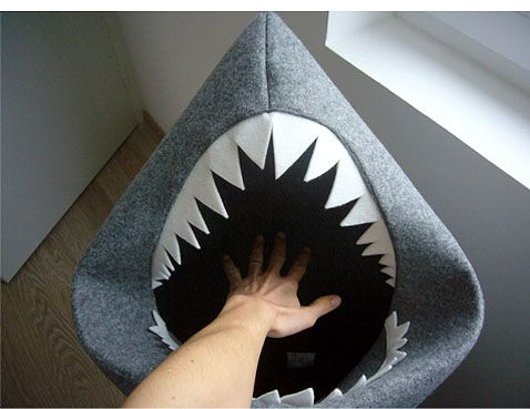 ...one picture of my hungry Shark ...! / send from Ondine / France