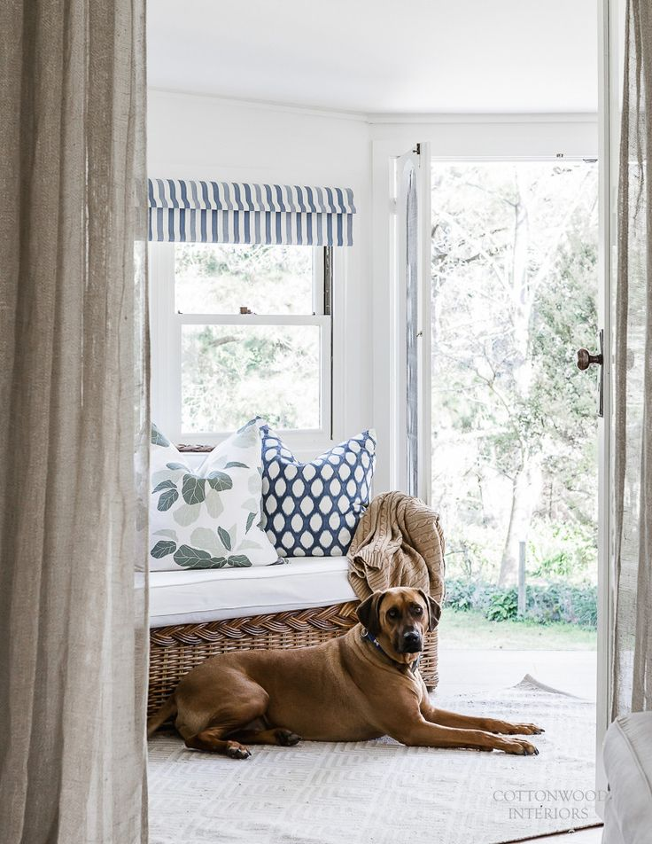 Sunroom. Fiddle leaf fig cushion by Studio McGee. Bunny Williams for Dash & Albert 'Cleo' indoor/outdoor rug | Cottonwood Interiors. Photo by Maree Homer.