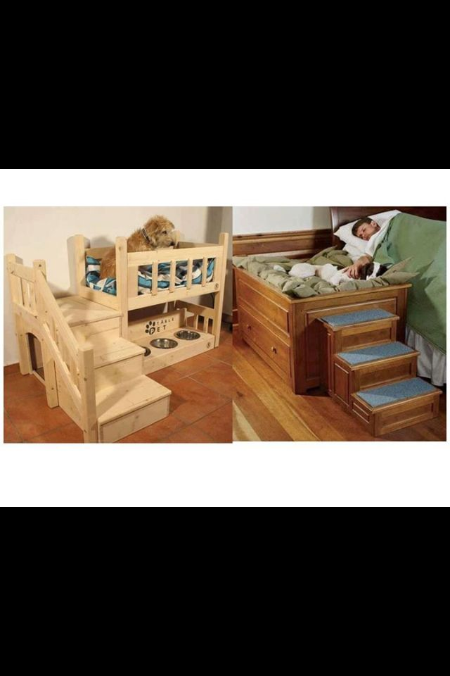 Dog bed idea 75 best Rustic Dog