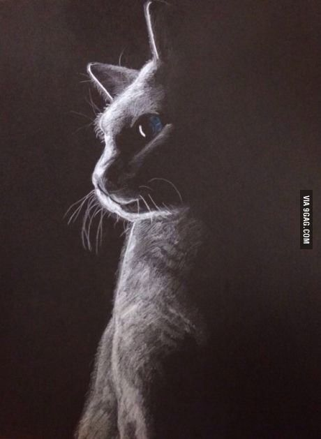 I tried to draw a picture using a white pencil on black paper. What do you guys think?