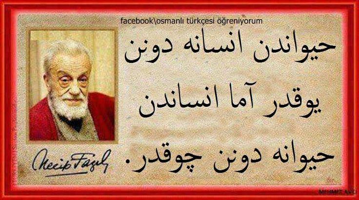 Hayvandan insana dönen yoktur ama insandan hayvana dönen çoktur...