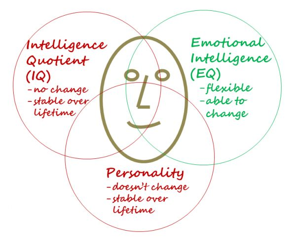 intelligence personality and interests evidence for Gardner noted that some evidence for multiple intelligences comes from the   most modern intelligence tests are based the relative position of a person's score   public interest in, and research on, emotional intellgence became widely.