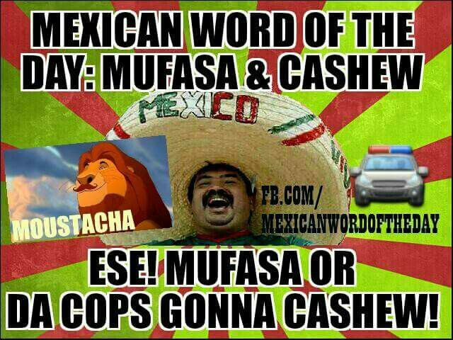 Funny Memes Funny Mexican: 821 Best Images About Mexican Memes On Pinterest