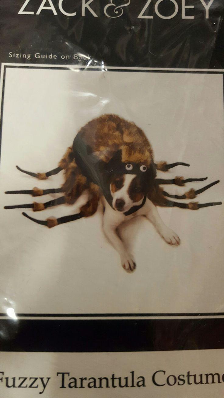 Tarantulas Costume
