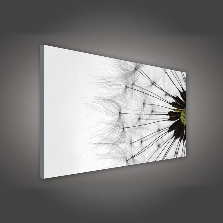 die besten 25 bild pusteblume ideen auf pinterest. Black Bedroom Furniture Sets. Home Design Ideas