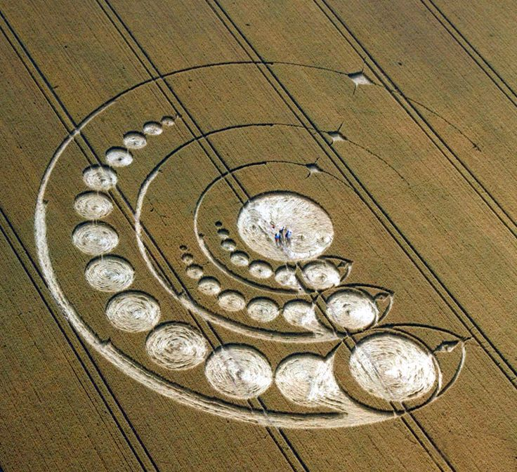 Crop Circle at Avebury Stone Circle, Wiltshire. Reported 1st August 2012.