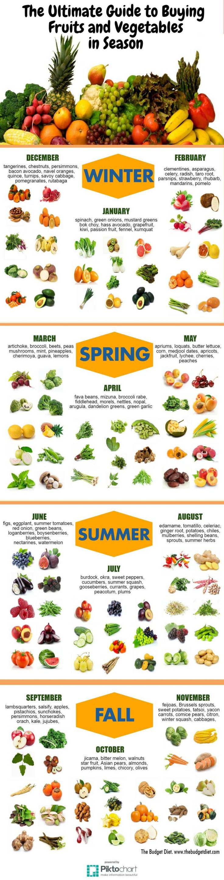 The Ultimate Guide to Buying Fruits and Vegetables in SeasonThe Budget Diet | Frugal Living, Budgeting Tips, Financial Freedom