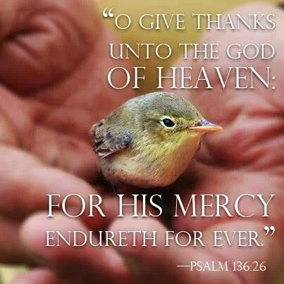 Psalm 136:26 | Sing to the Lord a New Song | Pinterest ...