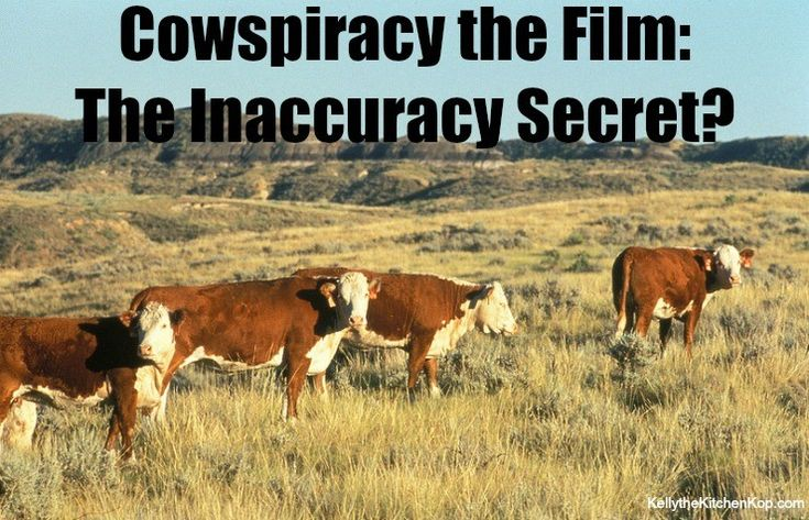 Cowspiracy Film Farce — It's Not WHAT You Eat, it's HOW its GROWN! (And Why Allan Savory is my HERO)