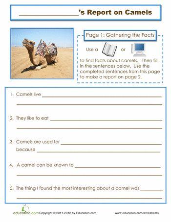 6b9a38346df1b77f2be8d349c4a1dbb9  camels worksheets