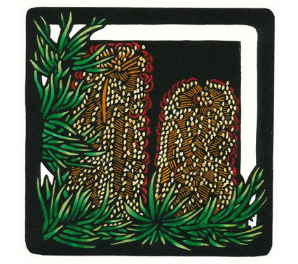 Hairpin Banksia Square - Limited Edition Handpainted Linocuts by Lynette Weir