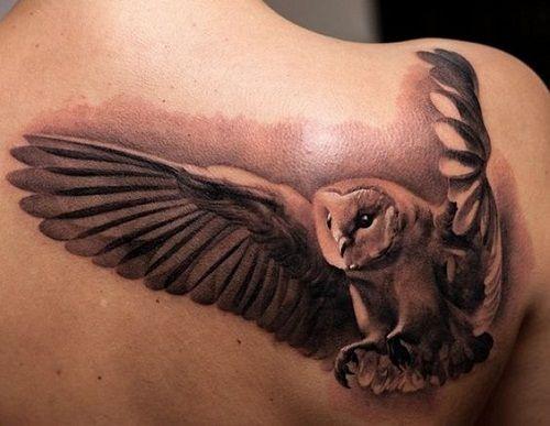 3D+Flying+Owl