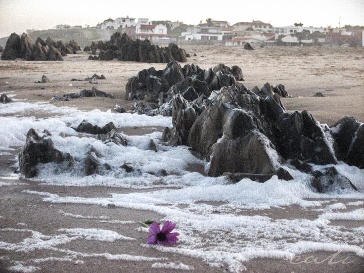 Mermaid gift. La Pedrera. Uruguay.