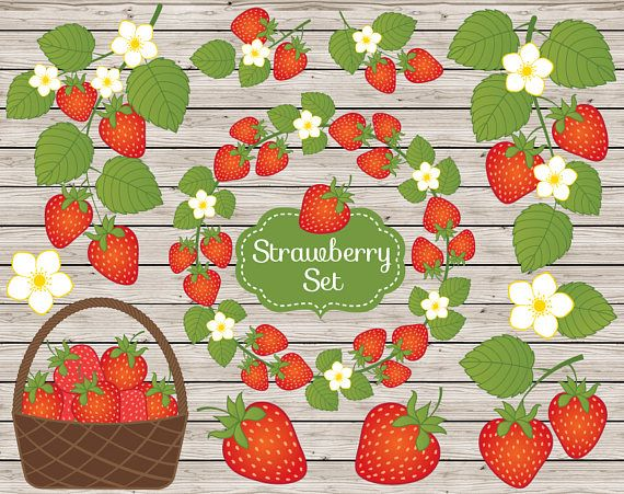 Strawberry Clipart, Vector Strawberry Clipart, Strawberry Clip Art, Digital Strawberry #thecreativemill
