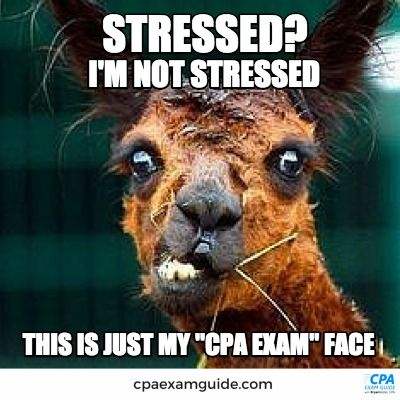 CPA Exam face is a lot like Zoolander's Blue Steel- a bit more disheveled & sleep deprived, though.