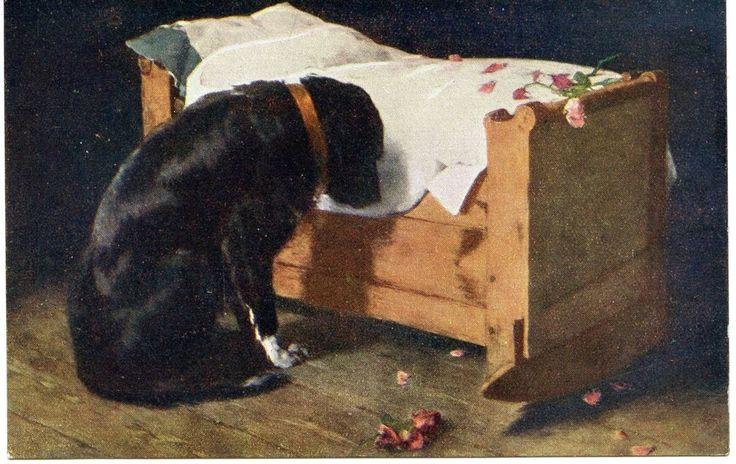 199 Best Images About Vintage Dog Postcards All Breeds