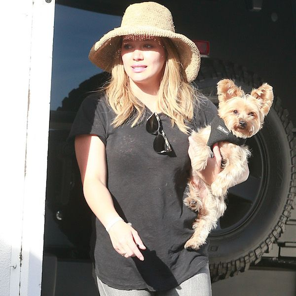 Hilary Duff Leaves Boyfriend's Gym With A Puppy And Her Son - http://oceanup.com/2016/10/10/hilary-duff-leaves-boyfriends-gym-with-a-puppy-and-her-son/