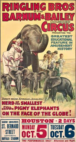 Ringling Brothers and Barnum and Bailey Combined Circus: Pigmy elephants, 1936