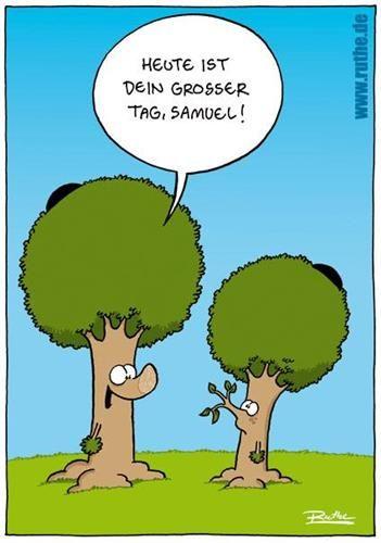 42 besten tod lustig bilder auf pinterest lustige bilder - Baum comic bilder ...