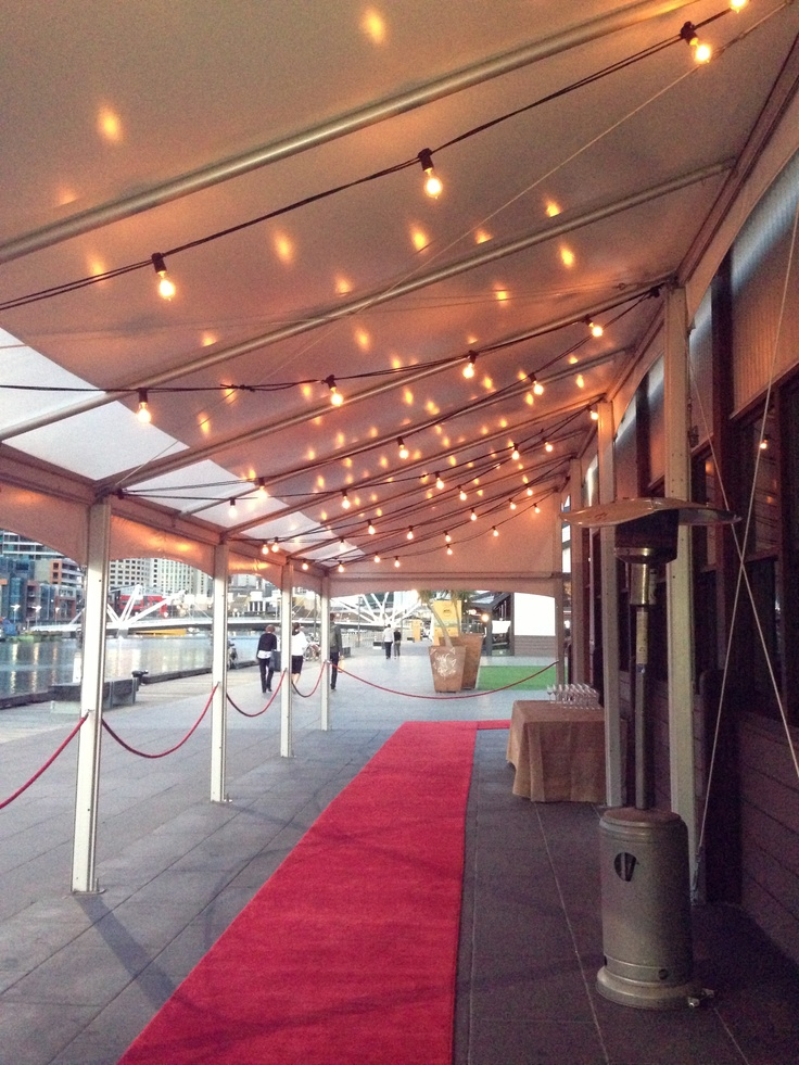 Festoon Lights a beautiful entrance for your wedding
