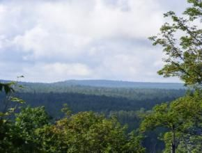 Adirondack Mountain Views • New York Land For Sale • Land And Camps