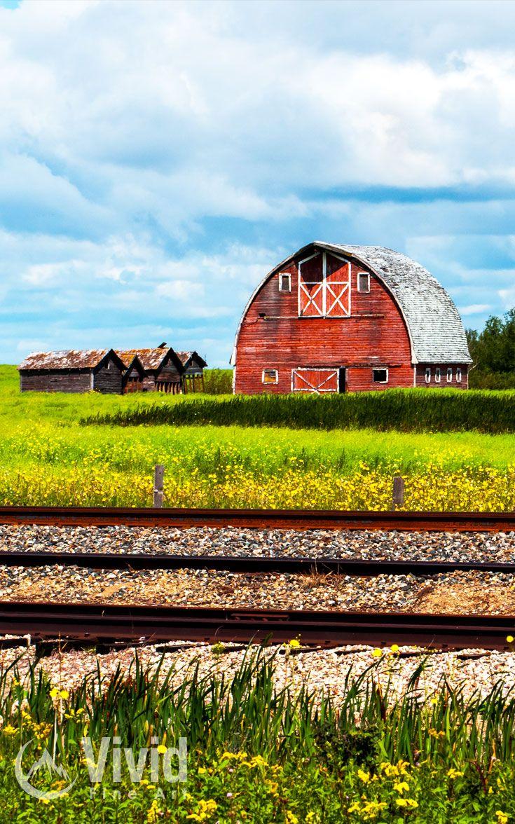 Red barn taken in Saskatchewan Canada on a beautiful summers day.