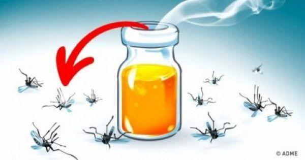 Βρήκαμε για σας συνταγές με φυσικά αρώματα που αποτρέπουν τα κουνούπια και παράλληλα θα είστε σε θέση να αισθανθείτε τη γοητεία του καλοκαιριού. 1. Βανίλια