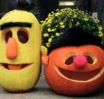 Bert and Ernie pumpkins...need to make these for Ashlynn! :)