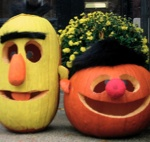 Bert and Ernie pumpkins...need to make these for Ashlynn! :)