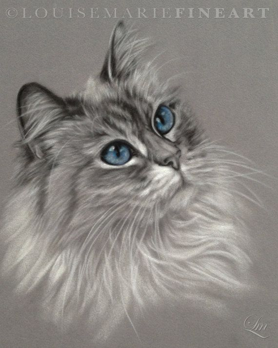 Custom Black & White Pet Portrait with colour by ByLouiseMarie,