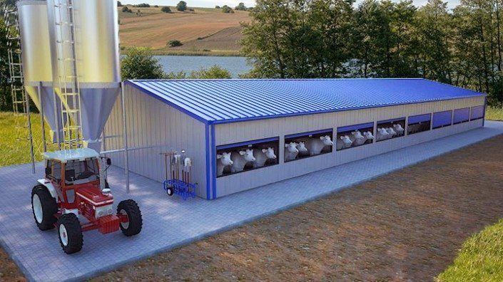 Hala agroindustriala pentru vaci 15×3.5×40 m