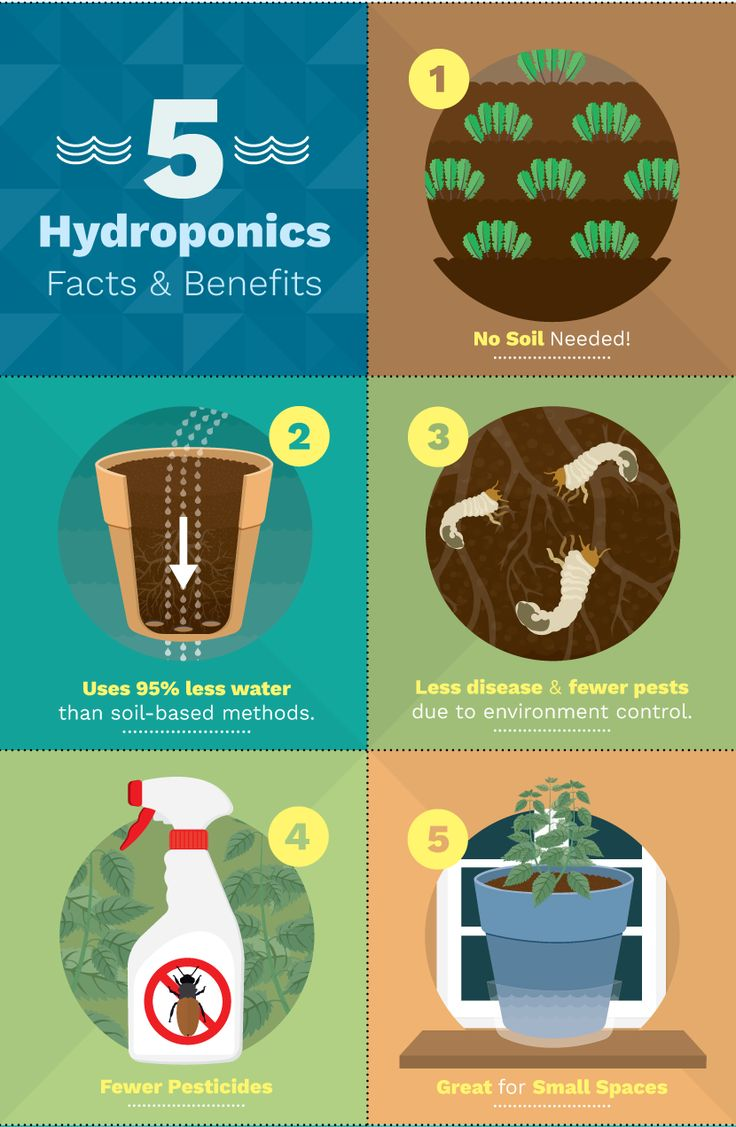 42 best hydroponic images on pinterest hydroponic gardening