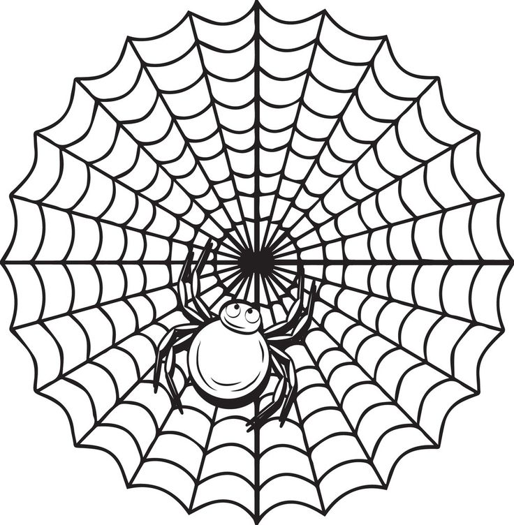 Printable Halloween Spider Web Coloring Page for Kids в ...