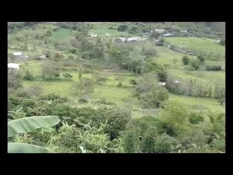 Vendo Lote Ubaque - Cundinamarca $ 120.000.000