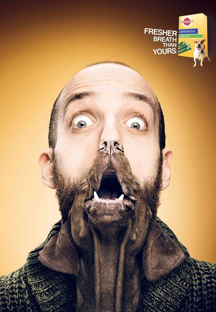 Pedigree Dentastix Fresh: The freshest dog breath, Benny