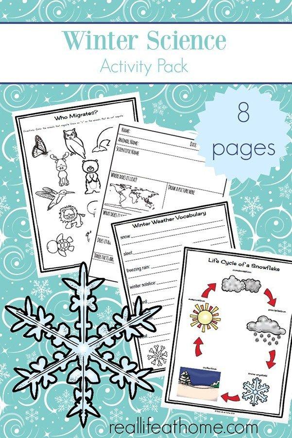 Free Snowman Worksheets For Preschool And Kindergarten Students Winter Science Activities Winter Science Winter Worksheets Snowflake worksheets for kindergarten