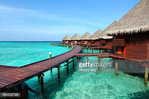 Photo : house on stilts maldives Photo : Palm tree #maldives #maldivesisland #paradisiac #ponton #vincentjary #relaxation #travel #wharf #turquoise #paradise #sea #island #tourism #way #ocean #wood #dive #color #maldives #live #photography #pontoon #indianocean #lagoon #zen #tourist #maldivesisland #footinthewater #maldive #connexion #houseonstilts #gettyimages #palm #tree #exotic #resort #hostel #luxe #luxury