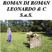 http://www.trovavetrine.it/roman-scuola-addestramento