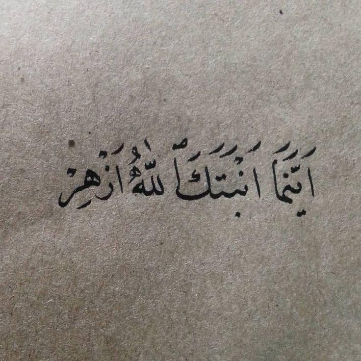 أينما أنبتك الله ؛ أزهِر ../ الخط العربي. Arabic calligraphy