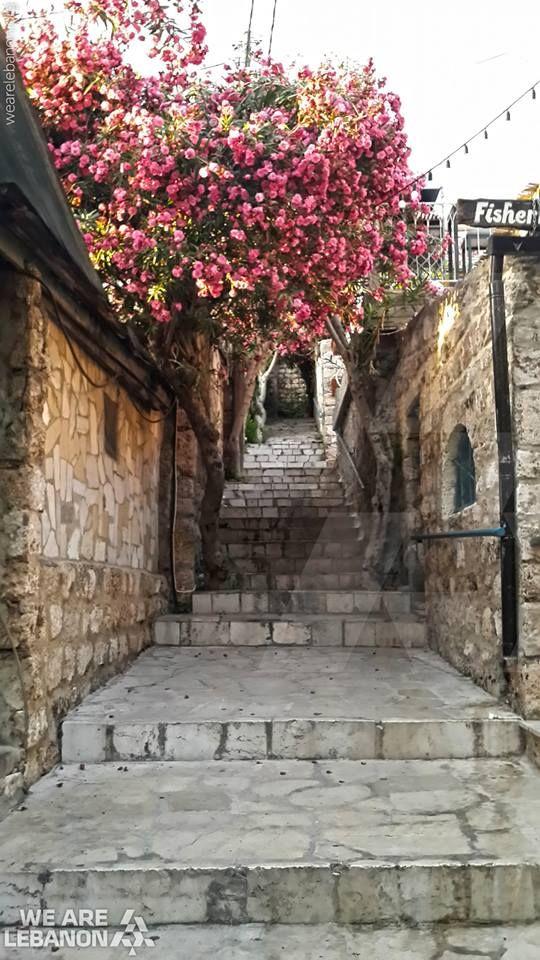 #Byblos #جبيل  By Jessica Obeid